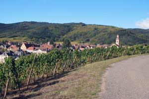 Route des Vins d'Alsace Riquewihr